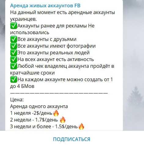 Предложения. Телеграм